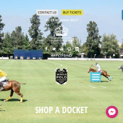 2 For 1 Adult Ticket World Cup Polo Deal Image
